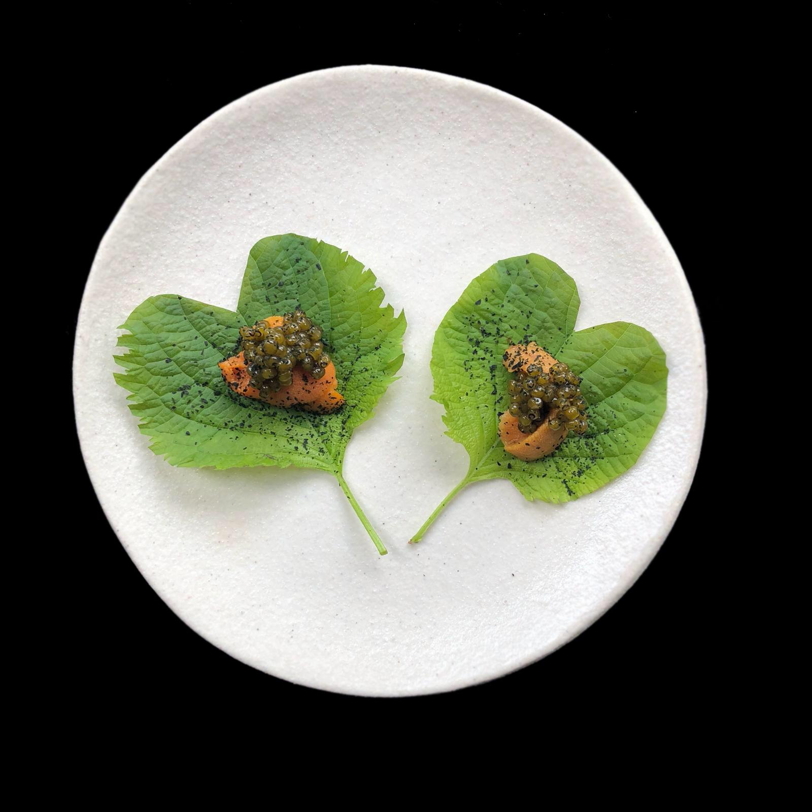 Blackwattle_ uni, ohba leaf, oscietra caviar_Valentine's Day